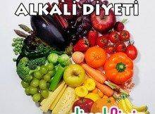 Alkali-Diyeti