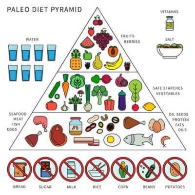 Paleo Diyeti Besin Piramidi